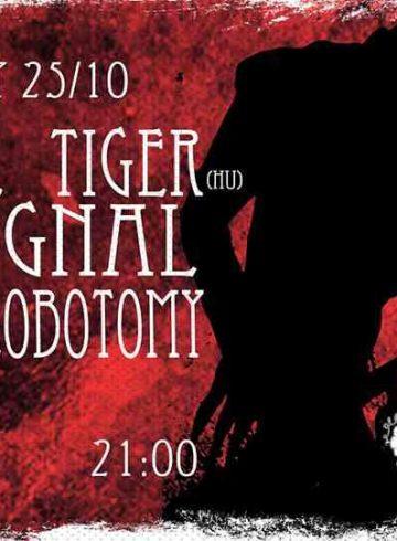Gustave Tiger (Hu) // Bat Signal // Teenage Lobotomy @8ball