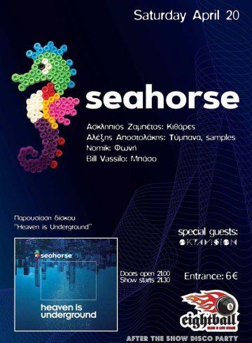 Seahorse | 8Ball Club