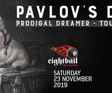 Pavlov's dog 23.11.2019