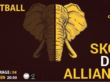 SKG's Dub Alliance Live at 8Ball Club